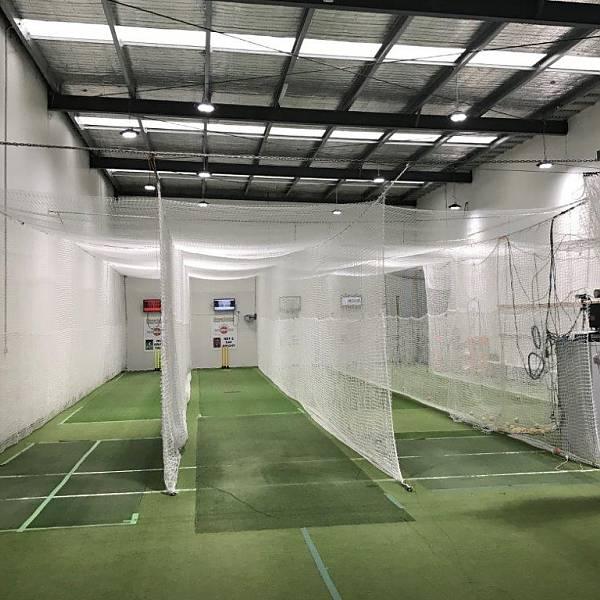 Clever Cricket Inside